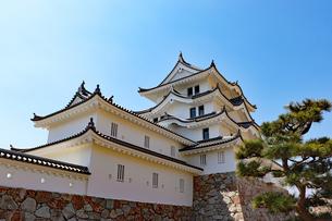 尼崎城の写真素材 [FYI03132466]
