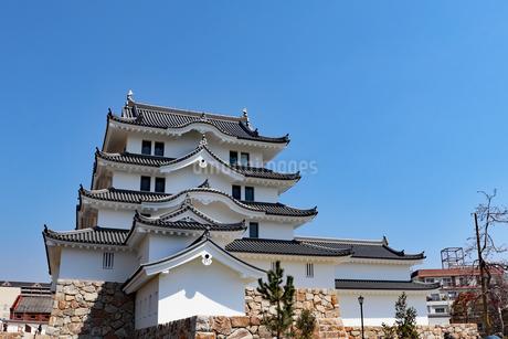青空と尼崎城の写真素材 [FYI03132480]