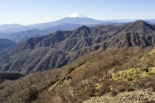 丹沢の山並みと富士山の眺望の写真素材 [FYI03132514]