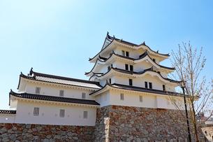 尼崎城の写真素材 [FYI03132771]