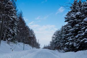 冬の山道の写真素材 [FYI03132864]