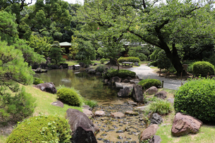 緑豊かな日本庭園の写真素材 [FYI03132897]