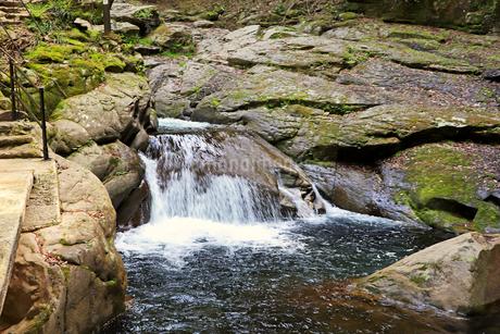 清らかな渓流の写真素材 [FYI03133044]