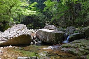 渓谷の巨大岩の写真素材 [FYI03133045]
