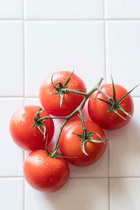 トマトの写真素材 [FYI03133175]