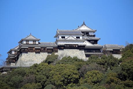 堀之内からの松山城の写真素材 [FYI03133369]