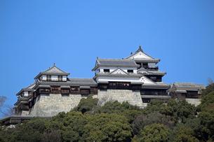 堀之内からの松山城の写真素材 [FYI03133370]