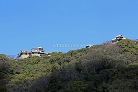 堀之内からの松山城の写真素材 [FYI03133372]