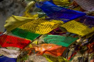 旗・タルチョの写真素材 [FYI03134021]