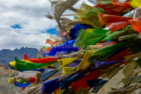 旗・タルチョの写真素材 [FYI03134022]