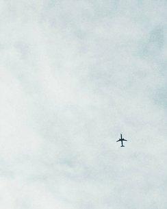 雲と飛行機の写真素材 [FYI03134150]