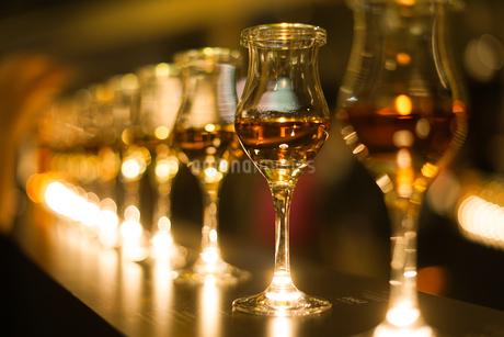 おしゃれなワイングラスの写真素材 [FYI03134224]