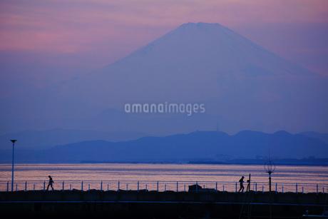 朝もやと富士山の写真素材 [FYI03134260]