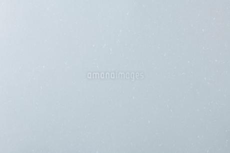和紙のテクスチャの写真素材 [FYI03134616]