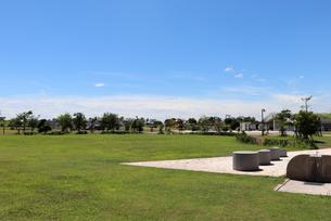 夏の公園の写真素材 [FYI03134919]