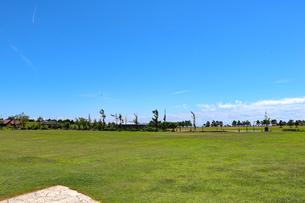 夏の芝生公園の写真素材 [FYI03134920]