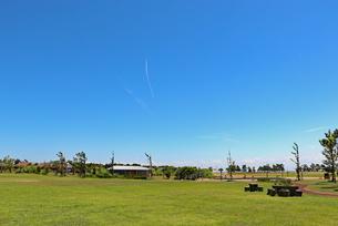快晴の芝生公園の写真素材 [FYI03134921]