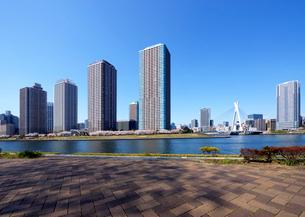 越中島公園から対岸の大川端リバーシティ21方向を見るの写真素材 [FYI03135094]