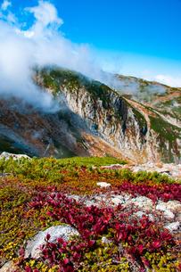 中央アルプス ウラシマツツジ紅葉の乗越浄土より中岳方面を望むの写真素材 [FYI03135714]