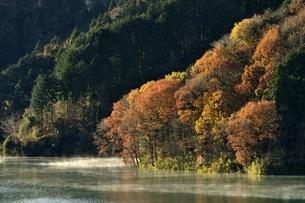 秋色の湖畔の写真素材 [FYI03135902]
