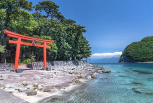 静岡県・西伊豆 諸口神社の写真素材 [FYI03135904]