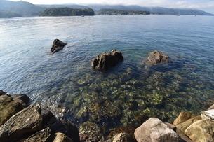 海、岩の写真素材 [FYI03136044]