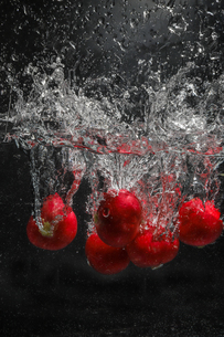 水中のラディッシュの写真素材 [FYI03136056]
