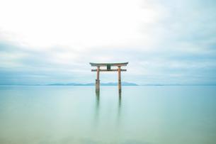 白髭神社の写真素材 [FYI03136238]