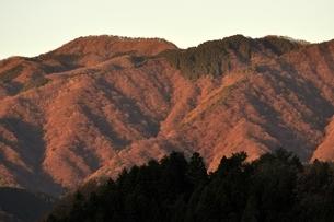朝焼けの黍殻山の写真素材 [FYI03136509]