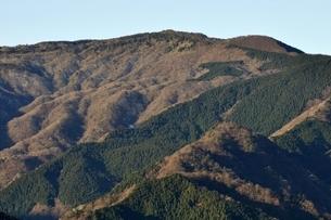 南山より袖平山の写真素材 [FYI03136519]