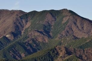 丹沢の焼山の写真素材 [FYI03136521]