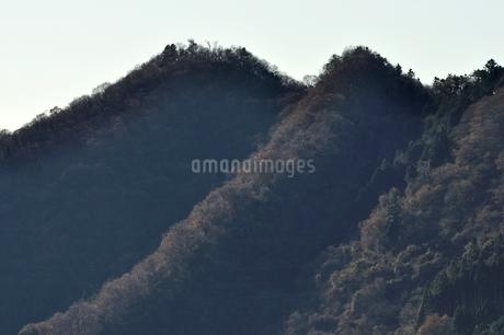 丹沢 高取山の写真素材 [FYI03136545]