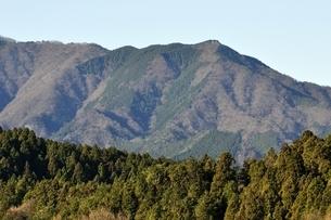 丹沢 焼山の写真素材 [FYI03136550]