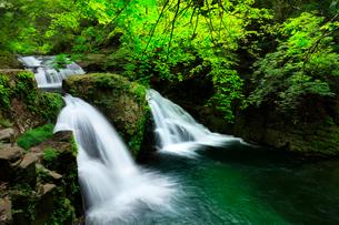 赤目四十八滝 荷担滝と新緑の写真素材 [FYI03136627]