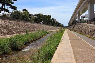 川沿いの遊歩道の写真素材 [FYI03136804]
