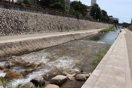 清らかな川の流れの写真素材 [FYI03136807]