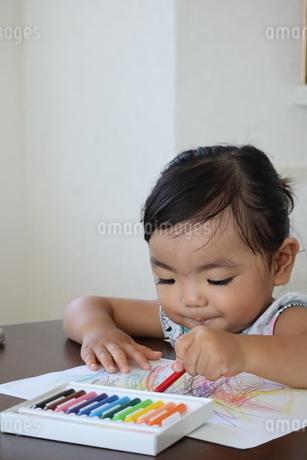 お絵描きに集中している女の子の写真素材 [FYI03136846]