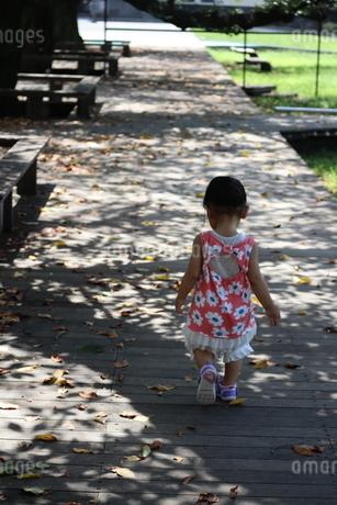 落ち葉の上を歩く女の子の写真素材 [FYI03136853]