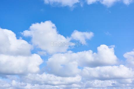 空 雲 背景素材の写真素材 [FYI03136975]