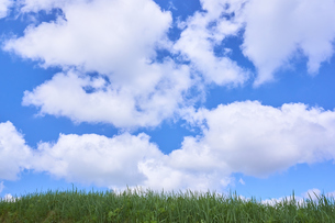 青空 雲 大地の写真素材 [FYI03136976]