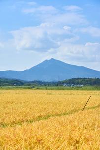 筑波山と田園風景の写真素材 [FYI03136984]