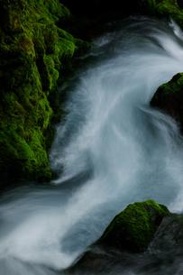 乗鞍山麓、五色ヶ原の桜根滝上流の風景の写真素材 [FYI03137026]