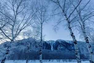 夜明けの上高地の風景の写真素材 [FYI03137032]
