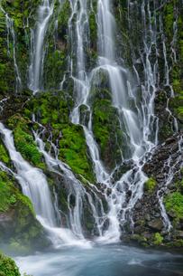 乗鞍山麓、五色が原の森の布引滝の写真素材 [FYI03137044]