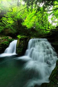 赤目四十八滝 荷担滝と清流の写真素材 [FYI03137182]