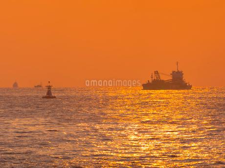 兵庫県 神戸市 自然 風景 夕日を浴びる海の写真素材 [FYI03137401]