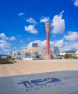 兵庫県 神戸市 自然 風景 青空の神戸港の写真素材 [FYI03137440]