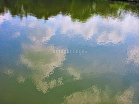 夏の自然の写真素材 [FYI03137460]