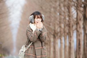 枯れ木が整列した道で寒そうにする女性の写真素材 [FYI03137501]