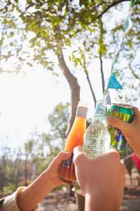 木の茂みで乾杯をしている人々の手元の写真素材 [FYI03137690]